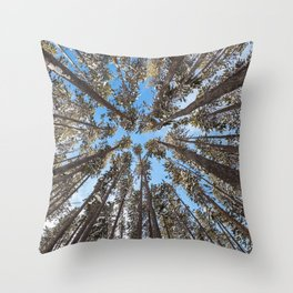 Yellowstone National Park - Lodgepole Forest Throw Pillow