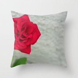 Rose on Stone Throw Pillow
