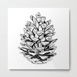 Pine cone illustration Metal Print