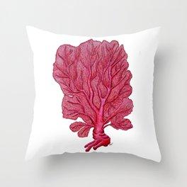 Venus red sea fan coral Throw Pillow