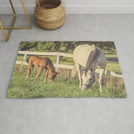 Mare and Foal // Horses Rug