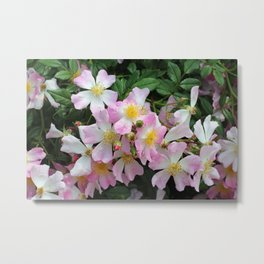 Pink, White and Yellow Blossoms Metal Print