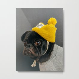 Pugs are cool Metal Print