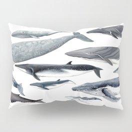 Whale diversity Pillow Sham