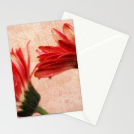 Red Texture 2 Stationery Cards