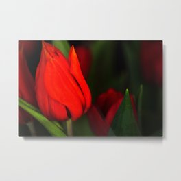 Tulips for mother Metal Print