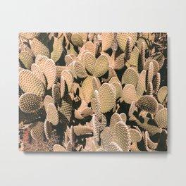 Cactus Maximalism // Vintage Bohemian Desert Photography Home Decor Summer Vibes Metal Print