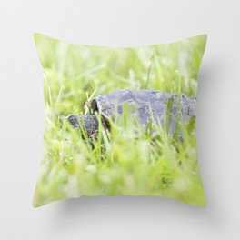 Snapping Turtle 8 Throw Pillow