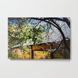 Blooming Sakura Trees In The Japanese Style Garden On A Sunny Spring Day Metal Print