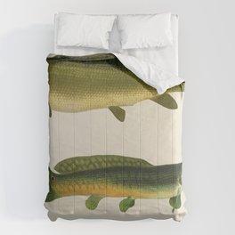 Illustrated New York Game Fish, Dogfish, Mud-fish, Bow-Fish Identification Chart Comforters