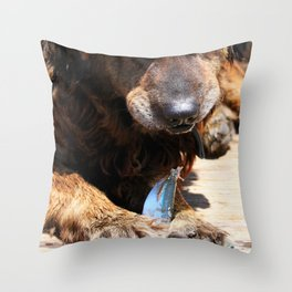 Dog Eating Fish Throw Pillow