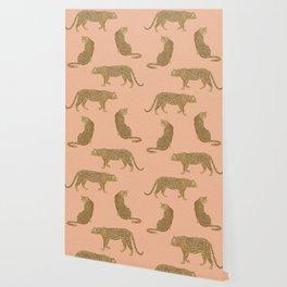 sunset leopards Wallpaper