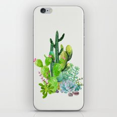 Cactus Garden II iPhone Skin