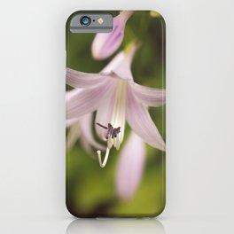 Softened Hosta Bloom Botanical / Nature / Floral Photograph iPhone Case
