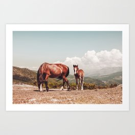 Wild Horses - Horse Photography - Mountains Wanderlust Travel photography by Ingrid Beddoes  Art Print
