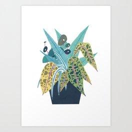 Potted Foliage Art Print