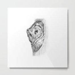 The Boreal Owl Metal Print