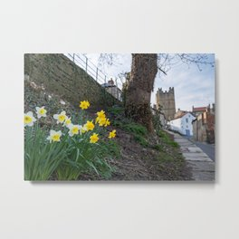 A view of daffodils in the foreground and Richmond Castle, North Yorkshire in the background Metal Print