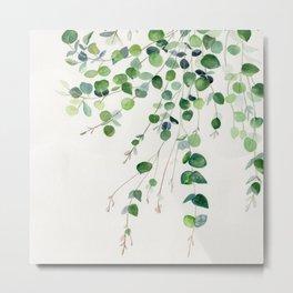 Eucalyptus Watercolor Metal Print