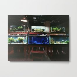 The Aquarium Room Metal Print