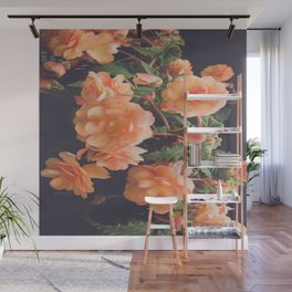 Pretty in Peach Wall Mural