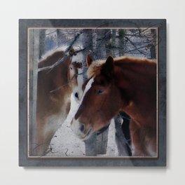 Mackinaw Island Horses Metal Print
