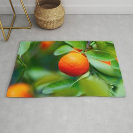 Orange Tangerine Or Mandarin Fruits On The Tree Rug