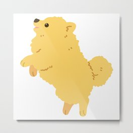 Cute Fluffy Pomeranian jumping and playing Metal Print