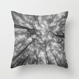 Smoky Mountain Summer Forest XI - National Park Nature Photography Throw Pillow