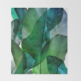 Palm leaf jungle Bali banana palm frond greens Decke