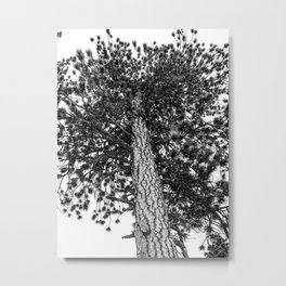 Tree Top // Snowy Winter Alpine Branches Trunk Nature Landscape Photography Black and White Decor Metal Print