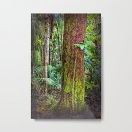 New and old rainforest growth Metal Print