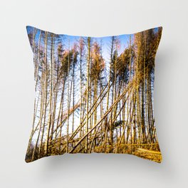 Fallen Trees After Storm Victoria February 2020 Möhne Forest bright Throw Pillow