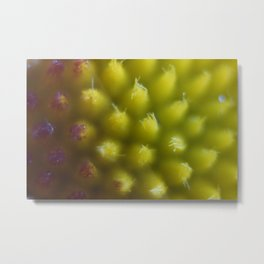Flower Yellow Center Up Close Extreme Metal Print