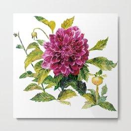 Cut Dahlia Watercolor on Wrinkled Paper Metal Print