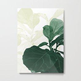 Soft Olive Green Fiddle Leaf Dream #1 #tropical #decor #art #society6 Metal Print