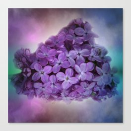 soft and dreamy -11- Canvas Print
