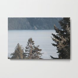 Pines on the Coast at Dusk Metal Print