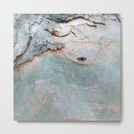Eucalyptus tree bark texture 11 Metal Print