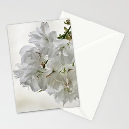 SPRING BLOSSOMS - IN WHITE - IN MEMORY OF MACKENZIE Stationery Cards