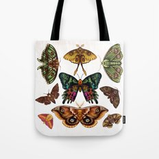 Moth Wings III Tote Bag