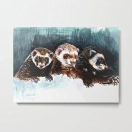Three Sleepy Ferrets Metal Print