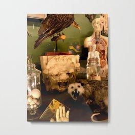 Curious Beasts Metal Print