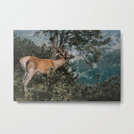 The Mountain Deer - Landscape and Nature Photography Metal Print