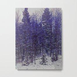 Winter Scene in New Mexico Metal Print
