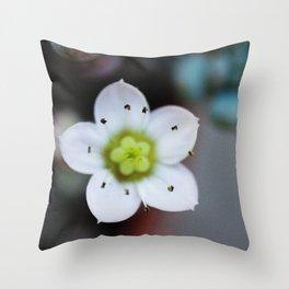 Petite Petals Throw Pillow