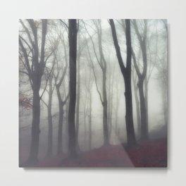 bonds - foggy forest scene Metal Print
