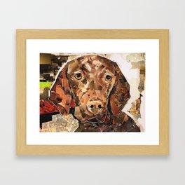 Pippen Framed Art Print