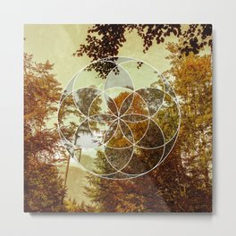 Autumn Meditation Metal Print
