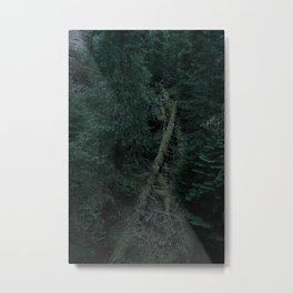 Forst texture Metal Print